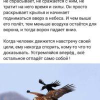 Ворон – самая умная птица. Но выше Ума – Разумность