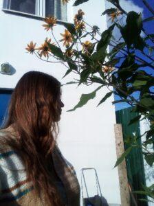 Dreams, Silvia
